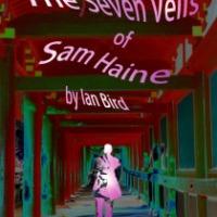 The Seven Veils of Sam Haine